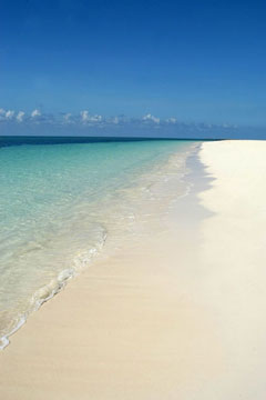 freeport beach - grand bahamas